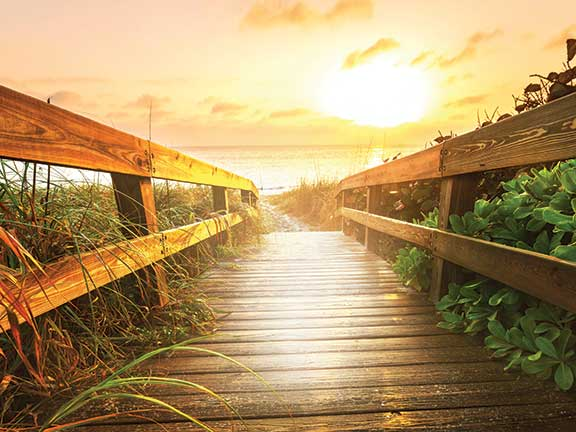 rowland-financial-advisory-brand-image-path-leading-to-beach-with-sunrise