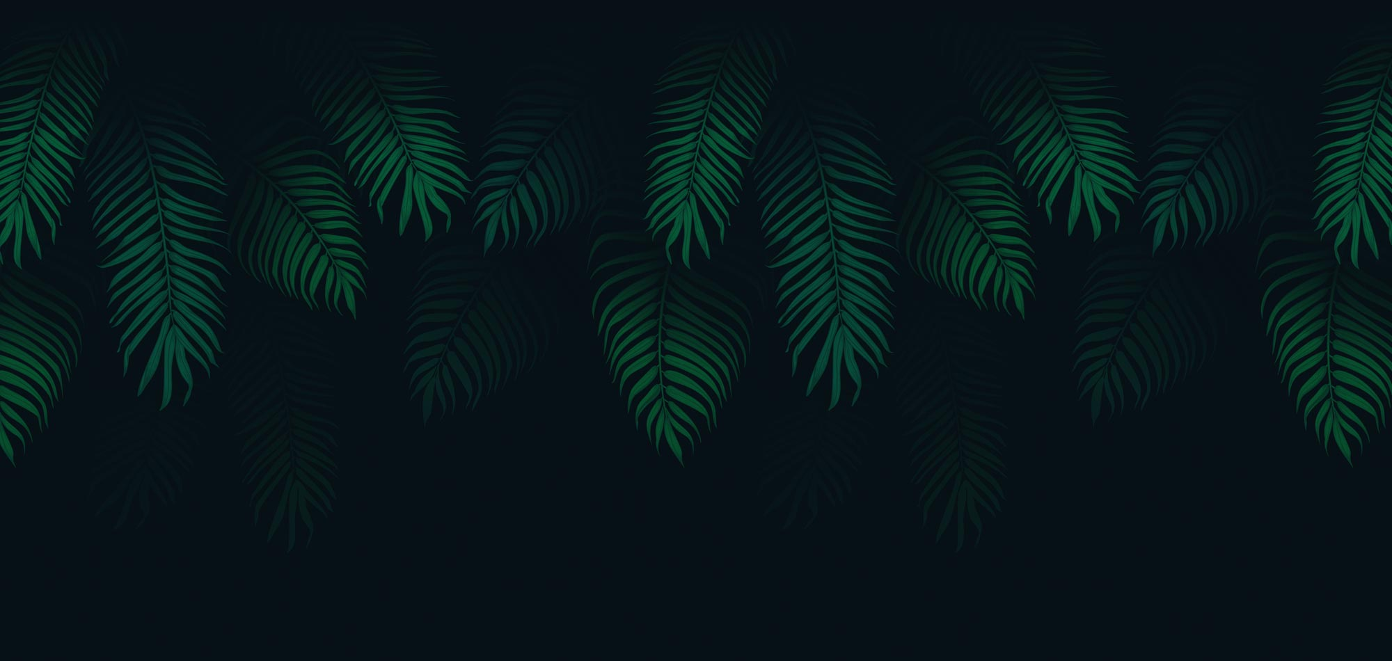 spearhead-creative-jungle-background